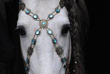 Embellishments / by Nancy Wilkins