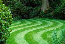 landscape/flower garden / by Janet Boyes