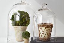 Cloche decorative ideas