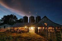 barns / by Chris Jarred