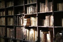 All the magic around archives, libraries, museums