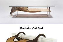 Kattenliefhebbers