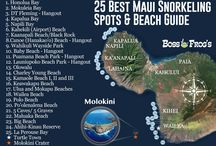 Maui Vacation