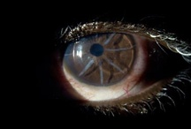 Contact Lenses / by Anna Ellsesser