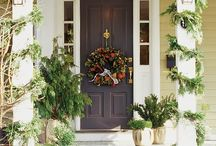 beautiful front doors / by Allison Poates