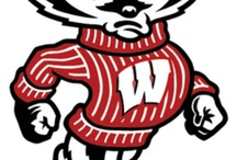 GO BADGERS GO / by Amy Elias
