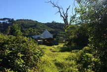 Pebblespring Farm / Farm