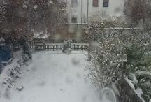 Winter Impressionen / zeigt den Winter von seiner schönsten Seite