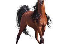 Zeichnung Pferde