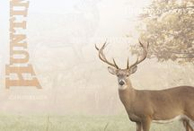 Deer and more / by George Driedger