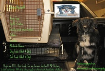 Fabulous Filanthrophy / Updates on supply drives and other Filanthrophic activities of my foundation, Fabulous McGrady and Friends Foundation