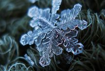 Magnificence of a Snowflake