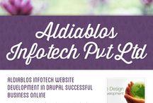 Aldiablos Infotech Website Development in Drupal successful business online