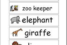 Vocabulary Themes