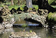 Spring Garden and River Lavant at West Dean Gardens