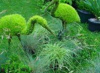Φιγούρες Φυτά