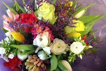 Lovely seasonal flowers / Beauty