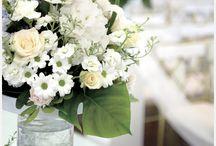 결혼준비 D-180 / 월간웨딩21 웨프 http://wef.co.kr