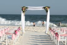 Beach Wedding / You'll find here different beach wedding ideas, designs and concept.