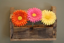 pallet shelf / by Debra Thomas