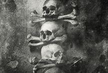 Skulls / czaszki na inspiracje