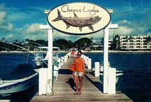 Momente in Florida / Wir haben schöne Stunden, Tage und Wochen im Sonnenschein-Staat Florida verbracht. Kommt mit, wir zeigen Euch unsere Tipps!