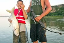 Bowfishing / by Deer & Deer Hunting