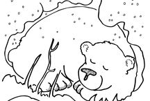 medved v zime