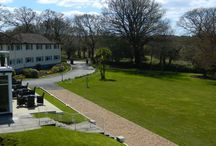 Our Moorland Garden