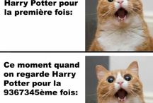 Harry Potter, une plus que ma passion: ma vie