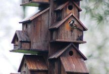bird houses and treehouses