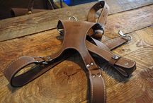 Leather harness multicamera belts