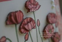 su pleasant poppies