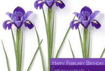 Happy February Birthday / Happy February Birthday! Hint, hint… February's birth flower is the Iris, the birth color is violet and the birthstone is Amethyst.