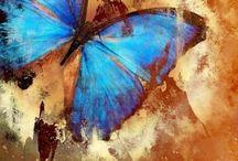 mariposa pintura