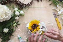 traTERRAeCIELO Videos - Anna Mazzucato Floral Designer / traTERRAeCIELO Videos - Anna Mazzucato Floral Designer