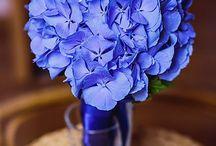 blue wedding bouquets / blue wedding bouquets