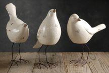 Bird-Ptáci