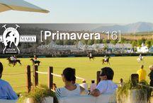 Temporada de Primavera 2016 / Una docena de torneos durante esta primavera en Santa María Polo Club Sotogrande: http://santamariapoloclub.com/torneos