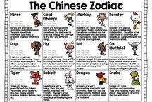 China studies