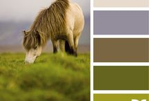 Colour Schemes / really cool color combination samples that I love!