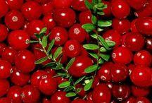 Cranberry - Karpalo / ❤️