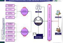 New Era HRM - / aree d'intervento del servizio per le risorse umane
