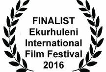 Film Festivals and Awards, Festivals und Auszeichnungen, Roadside Dokumentarfilm, Daniel Burkholz