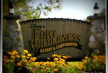 Fort wilderness Camp ground