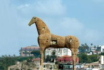 Cavalli - Horses / by Progetto Didatticarte