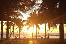 beach / inspiration for the beach and ocean