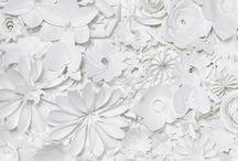 Sfondo con fiori di carta