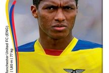 2014 - Brésil - Equateur