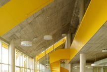 Arquitectura: Color